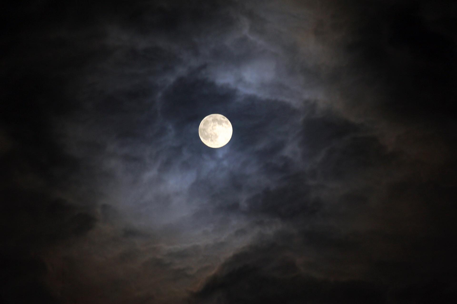 متن کامل ترانه تصنیف امشب شب مهتابه