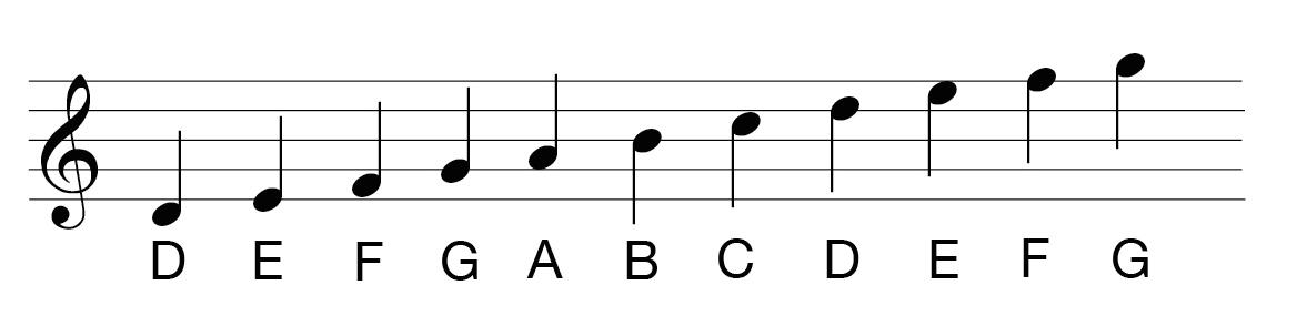 5 خط حامل